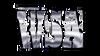 WSA - Worldwide Spirit Association - 2014 Mid West Nationals 2/8-9/14