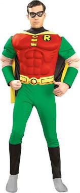 Hire Robin Costume. Medium Size. Superheroes