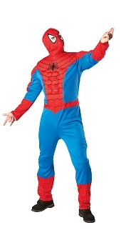 Spiderman Costume for Hire
