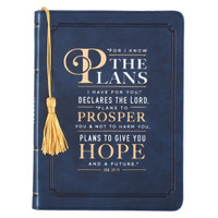 FOR I KNOW THE PLANS IN NAVY - JEREMIAH 29:11 JOURNAL
