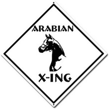 "Horse Crossing Sign 12"" x 12"" High Gloss UV Aluminum"