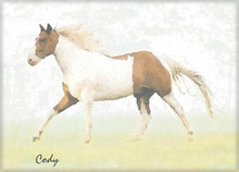 Cody Tri-color Pony Watercolor Art Dye Sublimation Aluminum Picture