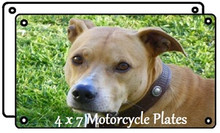 """4"""" x 7"""" Aluminum Sublimation Motorcycle Plate/Tag Blank"""