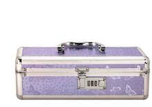 LOCKABLE VIBRATOR CASE PURPLE SMALL | BMS09915 | [category_name]
