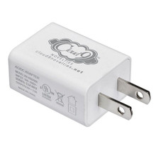 CLOUD 9 USB 1 PORT ADAPTER CHARGER FOR VIBRATORS (NET)