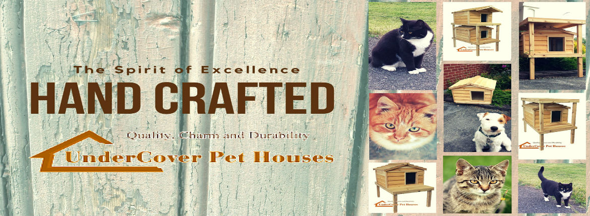 cat house, cat houses, houses for feral cats