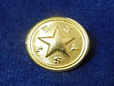 Texas Star Button