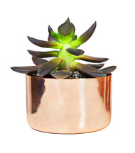 "3"" Copper Planter"