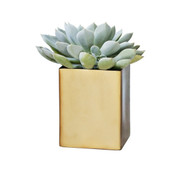 Small Square Brass Planter
