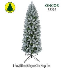 6ft Allegheny Slim Pine Hinge Tree - 522 tips