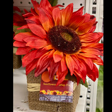 Harvest - Burlap Sunflower Pot - Red