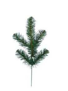 "15"" Northern Spruce"