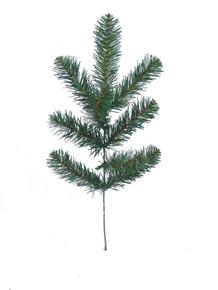 "19"" Northern Spruce"