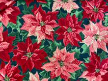 Christmas - Poinsettias All Over