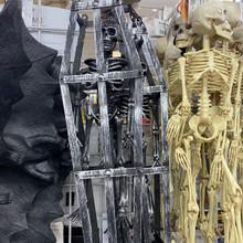 Hanging Skeleton in Coffin