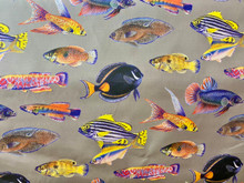 Uph/Drapery - Tropical Fish - Grey Ground