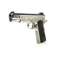 Taurus 1911 - 45 ACP in Polished Stainless Steel