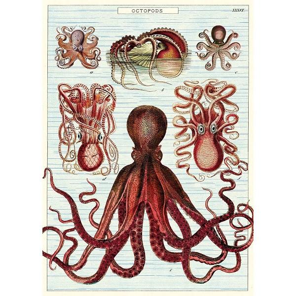 Octopods
