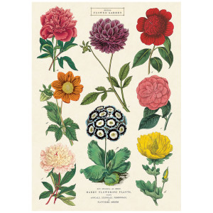 British Flower Garden