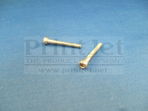 04329 Domino Screw