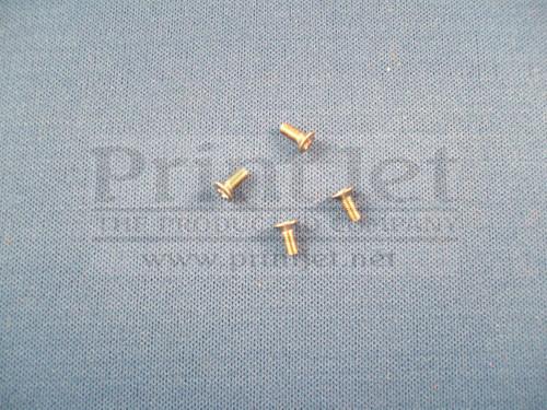 04732 Domino Screw