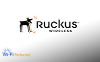 Ruckus 5GHz Omni-Directional antenna, vertically polarized, 5.5dBi, 911-0636-VP01