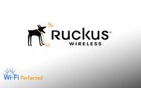 Ruckus Support Renewal for FlexMaster 2500, 826-2500-1000, 826-2500-3000, 826-2500-5000