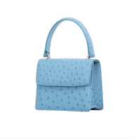 *TRUNK SHOW* Cape Cobra Leathercraft Mini Maxi Bag in Blue Jay Ostrich