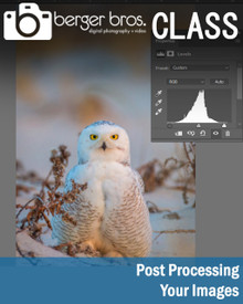 02/04/19 - Post Processing Your Images