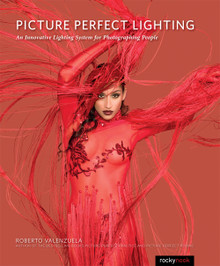 Picture Perfect Lighting (Print)