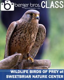 08/07/20  - Wildlife Birds of Prey at Sweetbriar Nature Center