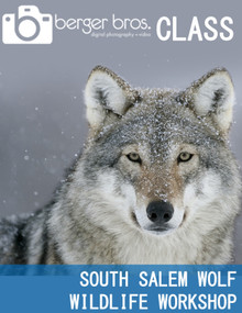 02/21/21 - South Salem Wolf Wildlife Workshop