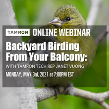 05/03/21 - Backyard Birding From Your Balcony with Janet Vuong