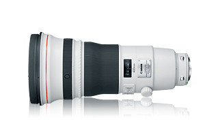 Canon EF 600mm f/4 IS USM Super Telephoto Lens