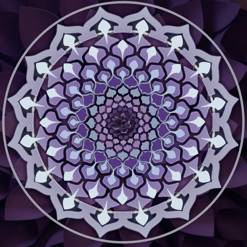 purple crown chakra