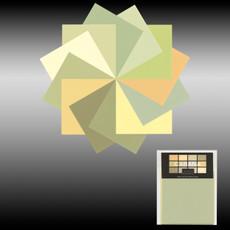 Cabana Dwelling Palette Consultation