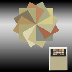 Bungalow Dwelling Paint Color Palette Consultation