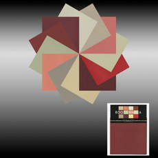 Color in Space Root Chakra Palette