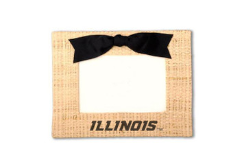 University of Illinois Vintage Photo Frame