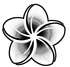 Black & White Plumeria - Decal