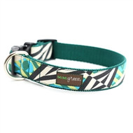 YOGI Dog Collars and Leashes