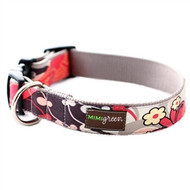 Brandy Dog Collars and Leashes