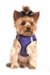 Ultra Purple Top Stitch American River Choke Free Dog Harness