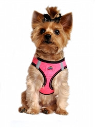 Iridescent Pink Top Stitch American River Choke Free Dog Harness