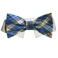 Issac Dog Bow Tie