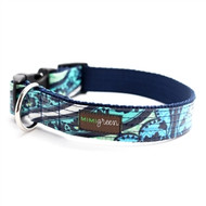 Lark Laminated Cotton Dog Collars and Leashes