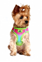 Rainbow Ombre American River Choke Free Dog Harness