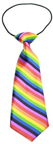 Big Dog Rainbow Neck Tie