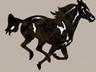 Horse Dog Peter Pads