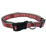 Ohio State Buckeyes Dog Collar